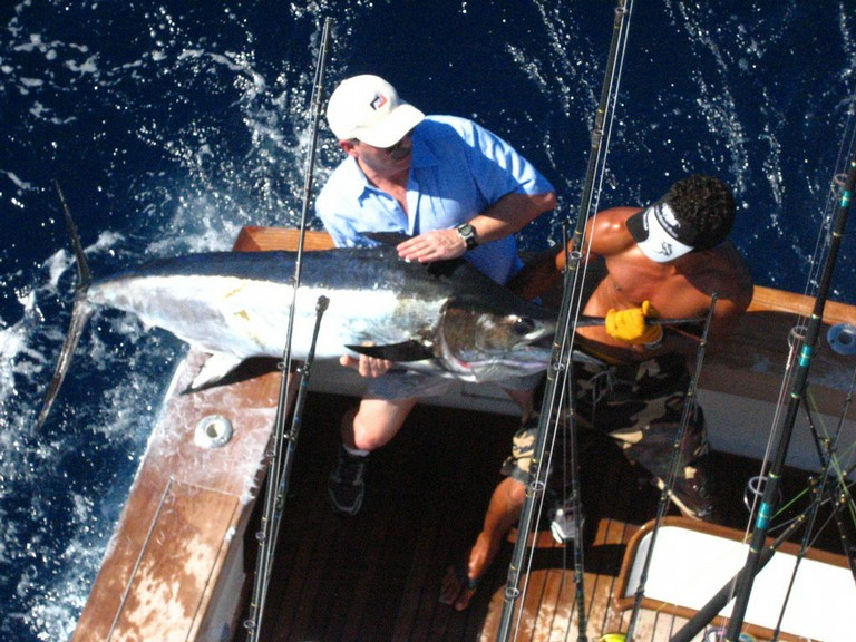 Marlin-fishing-charters-tours-costa-rica-pacific-coast.JPG - big