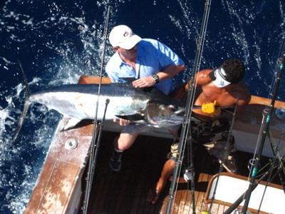 Marlin-fishing-charters-tours-costa-rica-pacific-coast.JPG - small