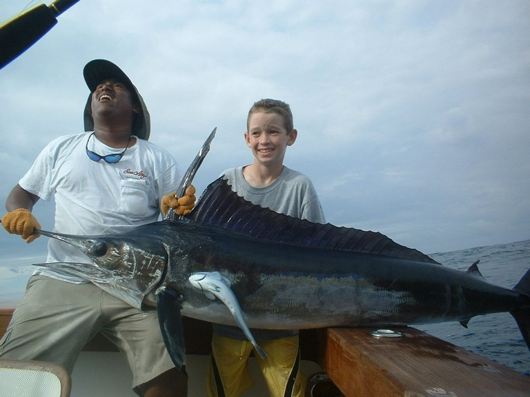 Sailfish Sailfish-fishing-charters-tours-costa-rica-pacific-coast.JPG - big