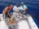 blue-marlin-fishing-charters-costa-rica-pacfic-coast-tours.jpg - thumbnail