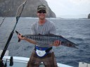 Brent Adams catches a Wahoo right off of the cliffs of the Catalina Islands in Flamingo Costa Rica and .jpg - thumbnail