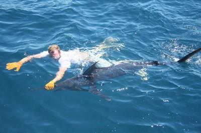 Costa Rica Marlin Fishing Flamingo fishing charters tours costa rica pacific coast.jpeg - small