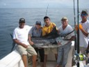 huge-marlin-catch-and-release-fishing-charters-tours-costa-rica-pacific-coast.jpg - thumbnail