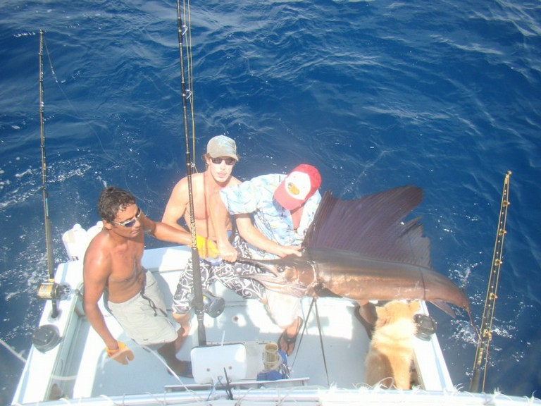 fishing charters tours costa rica pacific coast sail fish fishing - big