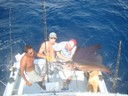 fishing charters tours costa rica pacific coast sail fish fishing - thumbnail