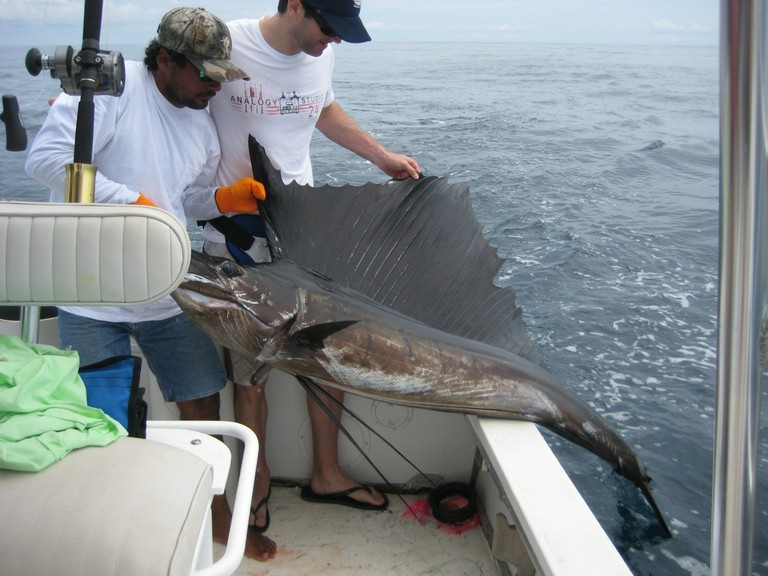 Sailfish Catch fishing charter tours costa rica pacific coast.jpg - big