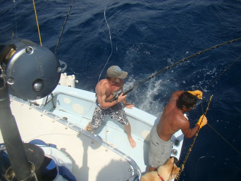 Surfer Changes Sport fishing charters tours costa rica pacific coast - big
