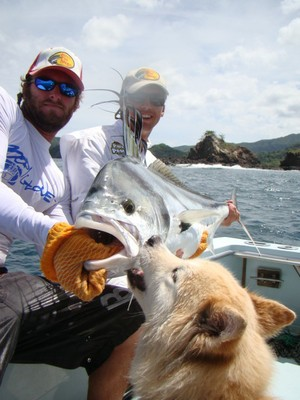 Wolf and Roosterfish, fishing charters tours costa rica pacific coast - small