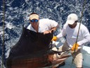fishing charters tours costa rica pacific coast sail fish catch righ off of the coast - thumbnail