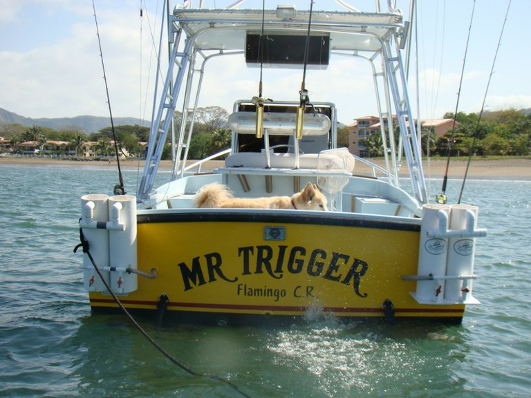 Mr. Trigger's Charter boat tour services - Flamingo and Quepos Costa Rica - big