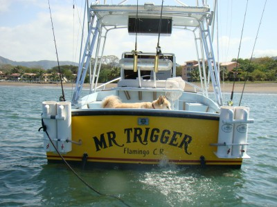 Mr. Trigger's Charter boat tour services - Flamingo and Quepos Costa Rica - small